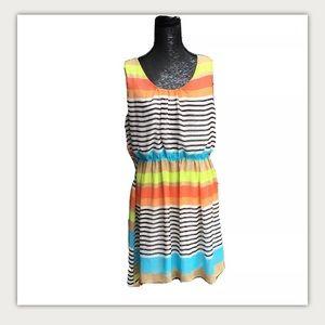 Papillon Striped Lined Sleeveless Dress